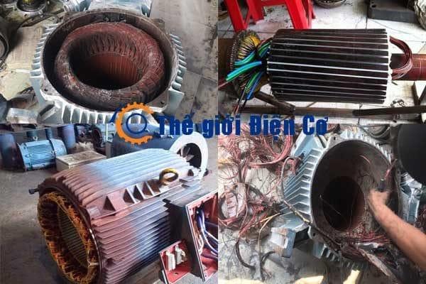 Các dịch vụ sửa chửa động cơ điện